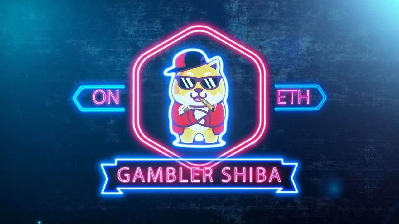 Hello直播间:Gambler Shiba 加密货币投注领域新革命-启示财经